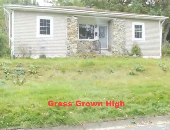 Look for grass grown high when looking for property.